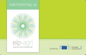 Logo EIP